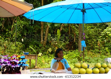 NAKON NAYOK, THAILAND - SEPTEMBER 14: Thai woman sells Thai fruit on September 14, 2010 in Nakon Nayok. - stock photo