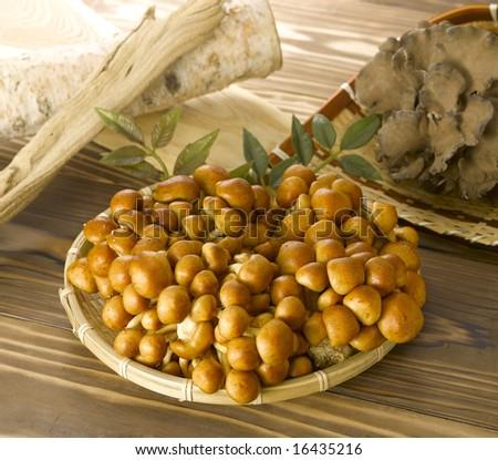 Nametake mushroom and Maitake mushroom on bamboo tray
