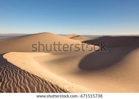 Namib desert, soft and undulating dunes in Walvis bay area  #671515738