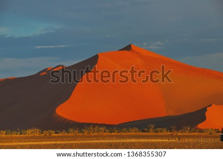 Namibian desert sunrise