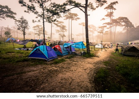Nan,Thailand - September 26, 2016: Poo Soi Daw,National Park in Nan of Thailand. #665739511