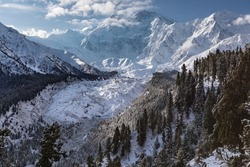 Nanga Parbat mountain glacier view  from Fairy meadows valley beautiful winter snow forest landscape Karakoram Pakistan