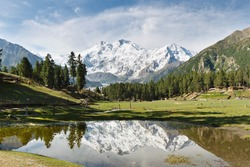 Nanga Parbat reflected in a pond at Fairy Meadows. The world's ninth highest mountain towering above idyllic alpine scenery in Northern Pakistan.