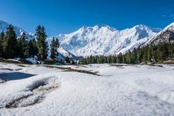 Nanga Parbat, the killer Mountain View for Fairy meadow