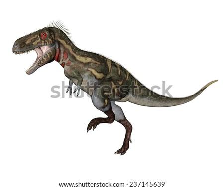Stock Photo Nanotyrannus dinosaur walking in white background- 3D render