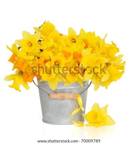 spring flower clip art images