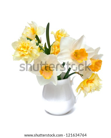 narcissus flowers in a pitcher over white