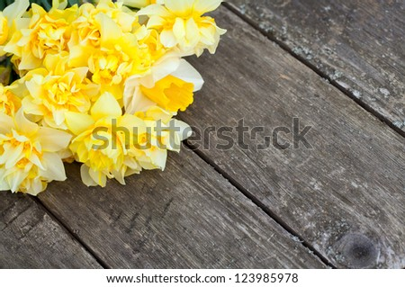 narcissus flowers on wooden background - stock photo