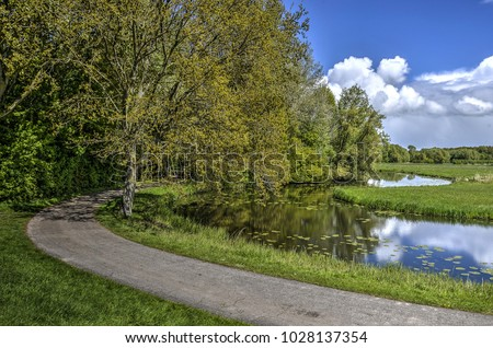 Narrow asphalt road and canal curving thorugh a landscape with fields and forests in Biesbosch nature reserve in the Netherlands #1028137354