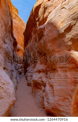 Narrow canyon in Valley of Fire State Park, Nevada, USA #1264470916