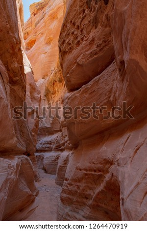 Narrow canyon in Valley of Fire State Park, Nevada, USA #1264470919