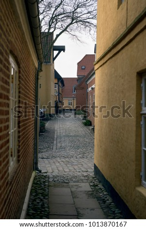 Narrow cobblestone street with old houses from royal town Ribe in Denmark #1013870167