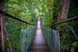 Narrow metal foot bridge across forest in autumn
