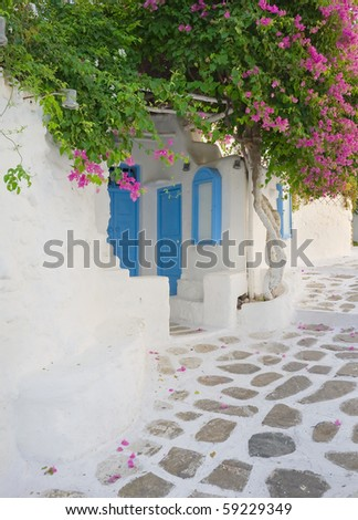 narrow street with flowers and a wall in white and blue color - typical of greece...