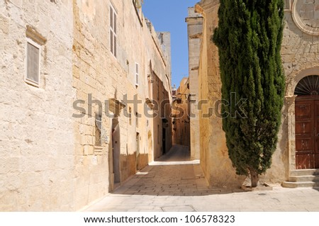 Narrow Street with little Chapel and Cypress Tree in the historic site of Mdina (The city of Silence) on Malta.