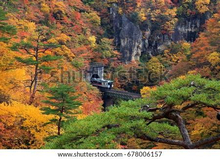 Naruko Gorge in autumn #678006157