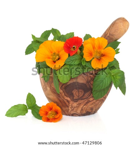 Nasturtium flower and mint herb salad in an olive wood mortar with pestle, isolated over white background.