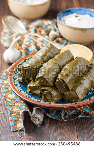 National Eastern dish dolma - vine leaves stuffed with ground beef and rice