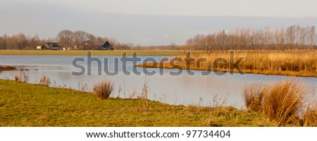 National Park De BIesbosch in the Netherlands (North-Brabant). The winter season is almost over and spring is coming soon already.
