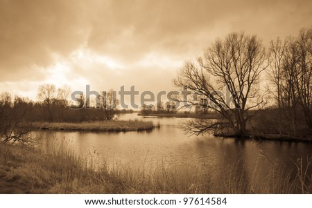 National Park De BIesbosch in the Netherlands. The winter season is almost over and spring is coming soon already. Antique light version.