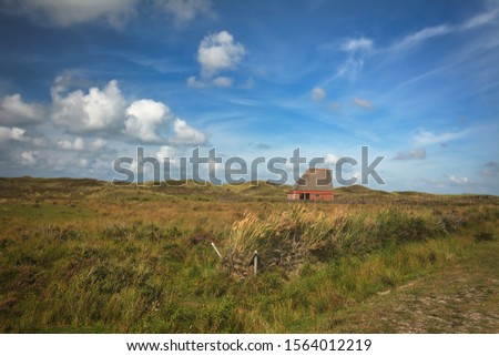 National park 'De Muy' with sheep shelter bungalow building on island Texel in Netherlands Foto stock ©