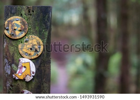 National trail footpath on old wooden post #1493931590