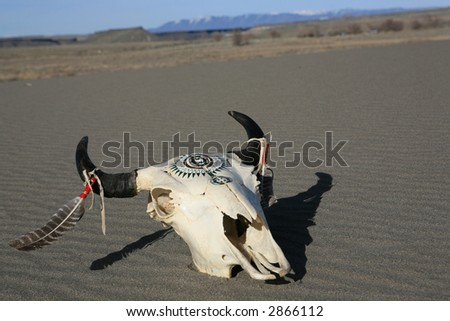 Native American decorated buffalo skull in the desert sand