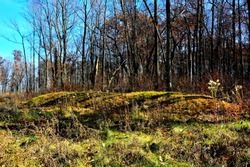 Native American Indian Effigy Burial Mound at Lizard Mound County Park in Washington County Wisconsin near West Bend on a sunny fall day with long shadows from the leafless trees in the background.