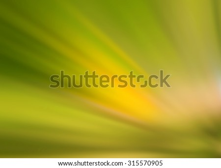 Natural abstract blur background. Blurring color background. Blurred light. Variety of color. Background for motivational text. Abstract blur pattern. Light soft blurry wallpaper. Green yellow image.