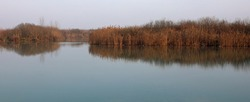 natural aquatic park of the river called MINCIO in Italy in winter