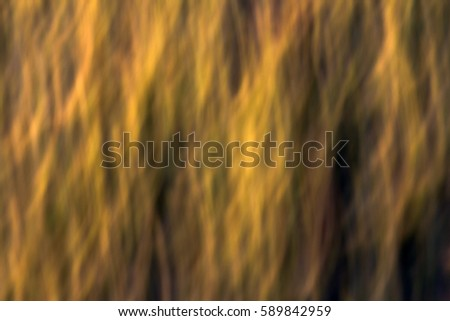 Natural Background Zdjęcia stock ©