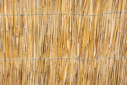 Natural background. A wattle or fence made of dry twigs
