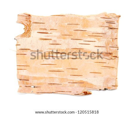 Natural background: birch bark, prepared for use: paintings, to manufacturing of decorative hand-made articles, and so on