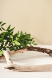 Natural background for cosmetic products created from wood and green leaves.