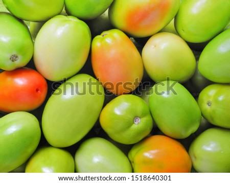 Natural background from fresh unripe tomatoes. Wallpaper with harvest.