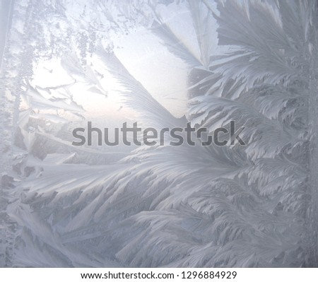 Natural background. The picture on the frozen window is an ice pattern like plant foliage.