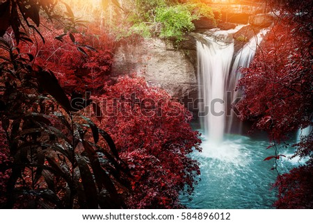 Natural background waterfall. waterfall Colorful leaves