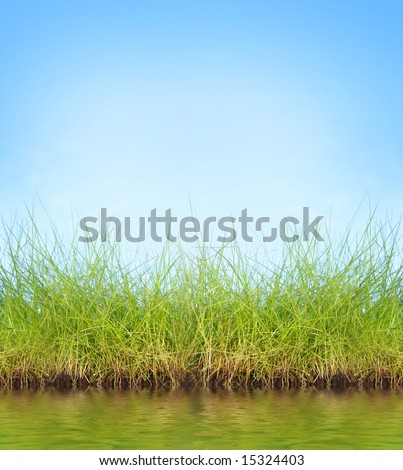 natural background with fresh green grass and water