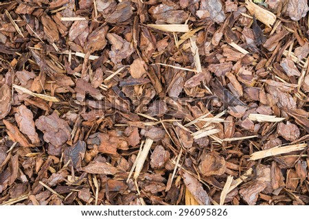 Natural bark used as a soil covering (compost) for mulch in the garden, wood chip background texture