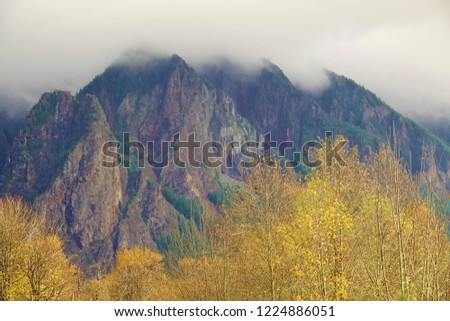 Natural beauty even on a cloudy grey day in western Washington state with clouds covering the peaks of the Cascade Mountains near North Bend, WA with colorful golden leaves on tree tops in foreground.