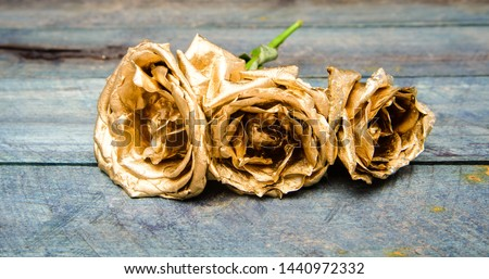 natural beauty. Gold rose. wealth and richness. floristics business. Vintage and jewelry. luxury and success. metallized decoration. antique concept. golden flower. riches and treasure. #1440972332