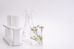 natural beauty organic botany with herb leaves scientific equipment researched cosmetic concept