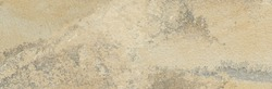 Natural beige sandstone inlaid with pyrulosite dendrites. High definition stone texture.