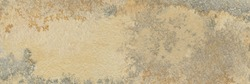 Natural beige sandstone with pyrologous dendrites. High definition stone texture.