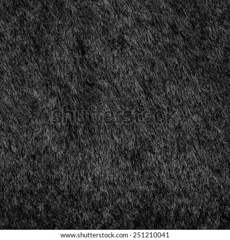 natural black fur texture as background