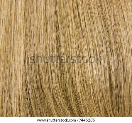 Natural Blond Hair Background; close up view