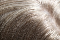 Natural blonde hair of a middle aged woman with grey highlights close up.