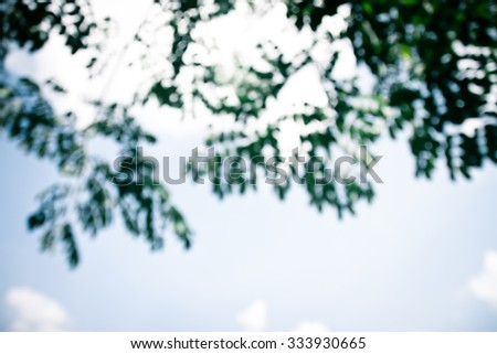 natural bokeh , blurred background #333930665