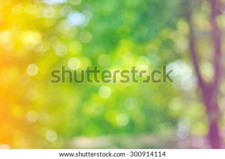 natural bokeh, Defocused Bokeh color Vintage background, colorful bokeh background