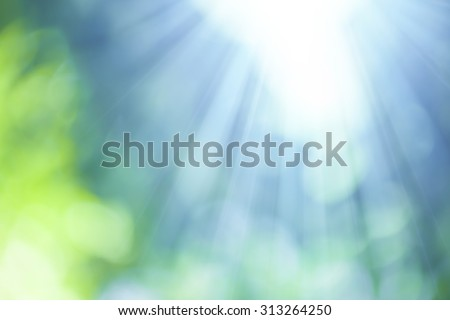 Natural Bokeh with sun rays